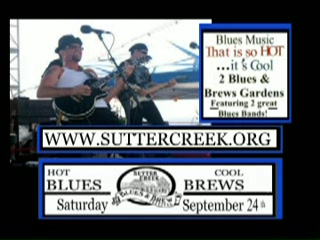 11 SC Blues & Brews Festival Pix3.jpg
